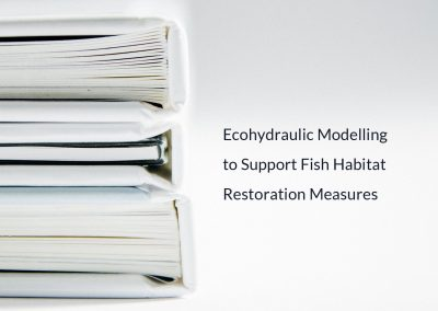 New Publication: Ecohydraulic Modelling to Support Fish Habitat Restoration Measures